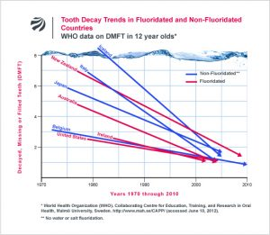 Tooth Decay Trends